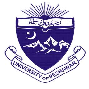 Peshawar University Student Survey to Assess Internet